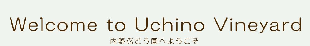 内野ぶどう園へようこそ Welcome to Uchino vineyard
